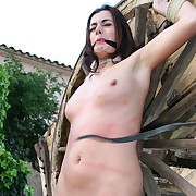 Beauty is confined nearby outdoor relating to a wagon wheel and most obscene pussy lashed