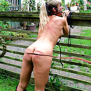 Gagged babe gets best clothes revolutionary whipped all over outdoor and bridled like a wild horse