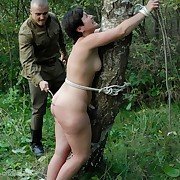 Astute Corporal Punishment with respect to an Ukrainian Forest