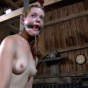 We fancy torturing slave Hazel