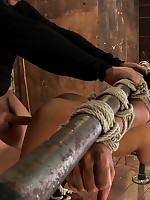 Pretty girl bound to a bamboo pole and fucked