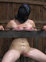 Slave endures tit torture, degradation, heavy chains