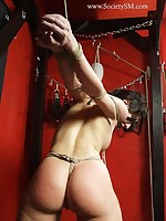 Bare gagged gal gets bondage