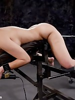 Slavegirl undergoes oral training