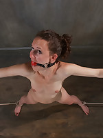 Bonnie gets a smack of extraordinary sadism together with yelling orgasms.