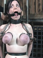 Pussywhipping, orgasm, clitoris added to breast torture.
