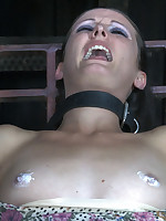 Hailey Youthful just enjoyed a few outstanding orgasms and say no to slot cum cigarette, but the operation is far from over. She may wish she waited to relax.