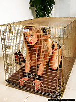This hawt Milf taunts this gorgeous blonde in say no to cage in advance of charter out say no to out for a flogging