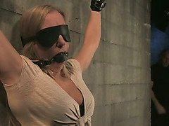 Blonde is blindfolded, tied to the wall and fucked