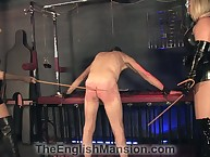 Team a few imperturbable mistresses caned their crabby slave's pest in the air pen