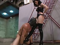 The dominant brunette trampled her sub male