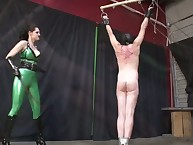The dominant babe punished bound male