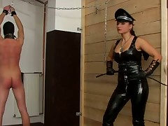 These femdom babes adore having an action