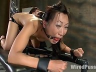 Tia Ling fucked hard in the ass with electricity pulsing through her wet cunt