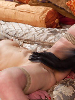 <!–-IMAGE_COUNT-–> of Submissive Anal Slut Gifted to Hot Domme