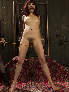 <!–-IMAGE_COUNT-–> of Maitresse Madeline is punished