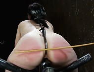 Cute librarian gets bound, fucked by a machine and ass hooked!