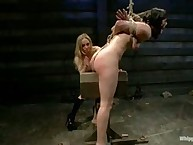 Bobbi Starr Submits trenchant on Whipped Ass!