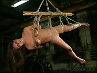 Harsh body suspension and flogging